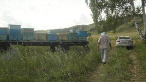 с. Арсёново, Р. Башкортостан