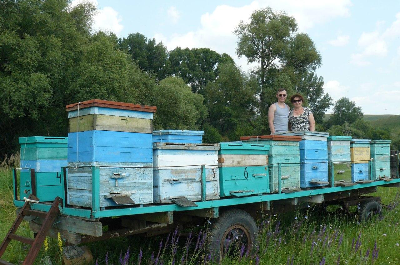 Нормы потребления мёда